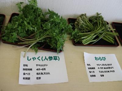 山菜フェスタ