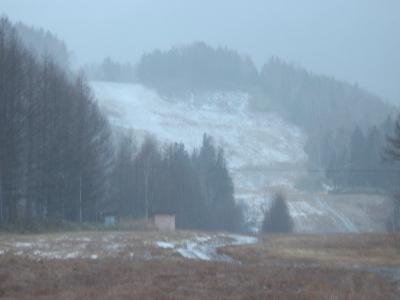 雪が来ました。